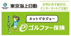 東京海上日動eゴルファー保険:株式会社 保険ブレイン